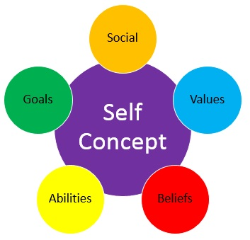 self concept Self concept is the way in which you think about yourself and the way in which you see yourself as a person.